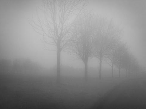 mist_2